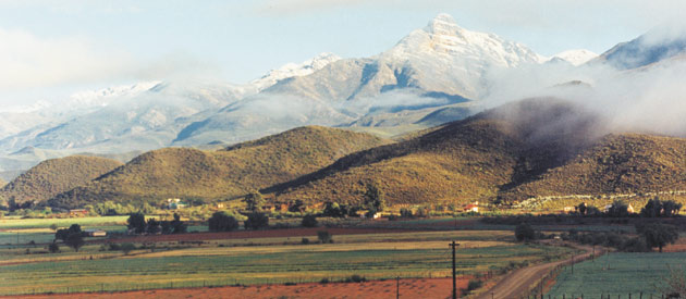 Picture of Ladismith